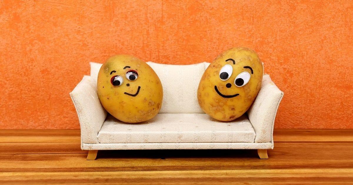 https://pixabay.com/ru/couch-potatoes-%D1%81%D0%BC%D0%B5%D1%88%D0%BD%D0%BE%D0%B9-%D0%BA%D0%B0%D1%80%D1%82%D0%BE%D1%84%D0%B5%D0%BB%D1%8C-3116580/